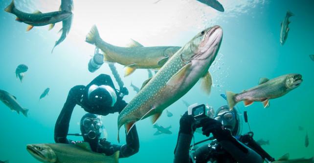 Unterwasser Fotografie und Film Workshops mit dem Mares Team