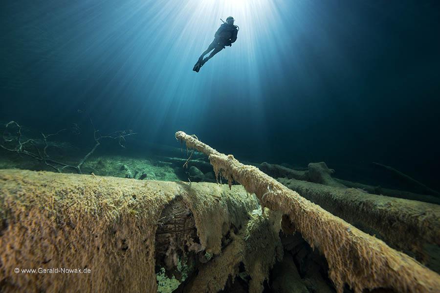 Taucher im Lichtspiel des Samaranger Sees