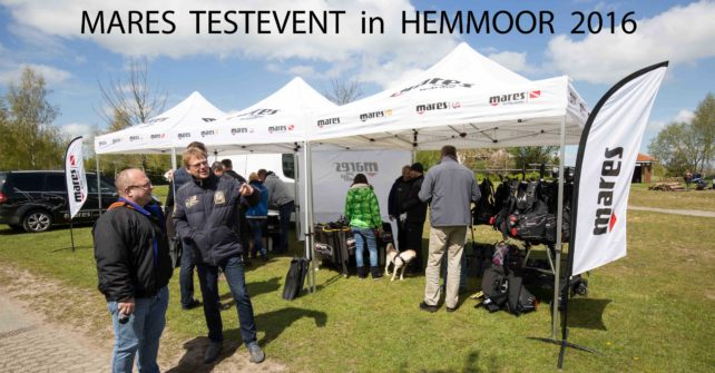 MARES  TESTEVENT  in  HEMMOOR  2016