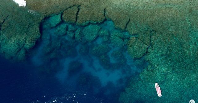 Yap: Mantafest 2016 – Unterwasserfoto-Akademie unter Mantas und Haien