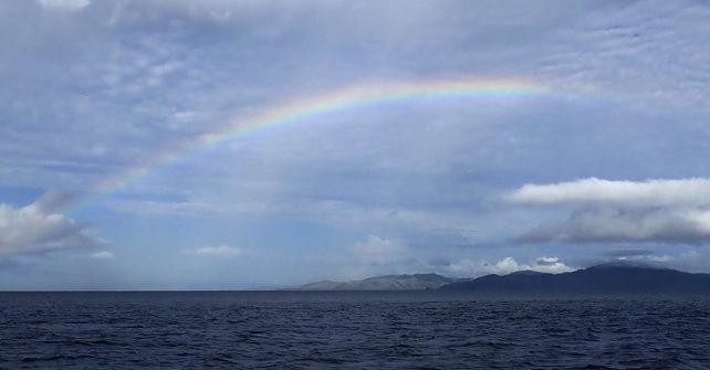 Ein Regenbogen überm Riff