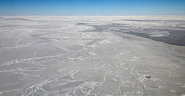 Antarktis: kein neues Meeresschutzgebiet im Südpolarmeer